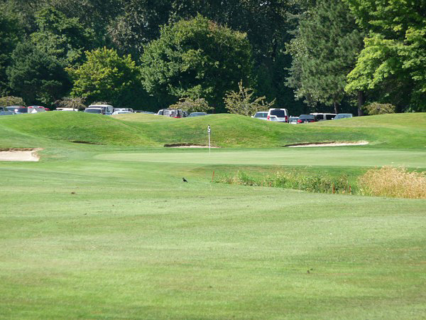 Heron lakes golf club
