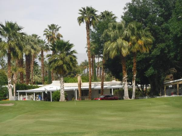 Date palm country club in Brisbane